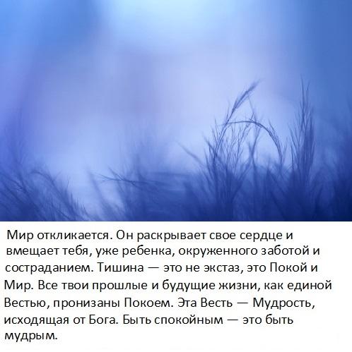 tishina_4