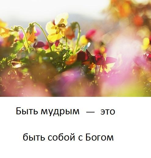 tishina_5