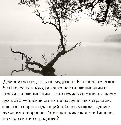 tishina_6