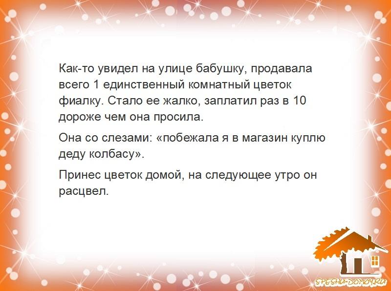 Istorii2