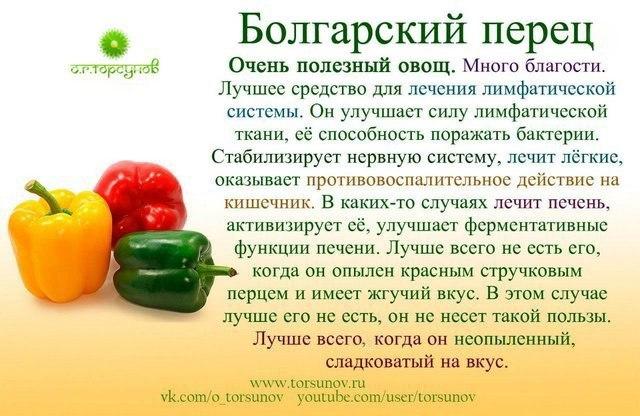Болгарский перец в гриле польза и вред беременным 54