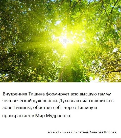 tishina_12