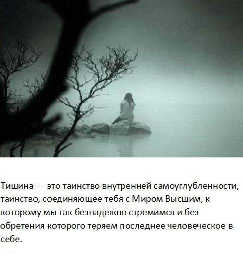 tishina_9